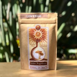 Golden-magnificence-Lion's-Mane-Mushroom-Extract